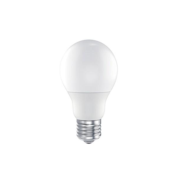 LED Ecolux Lampe E27 10 W