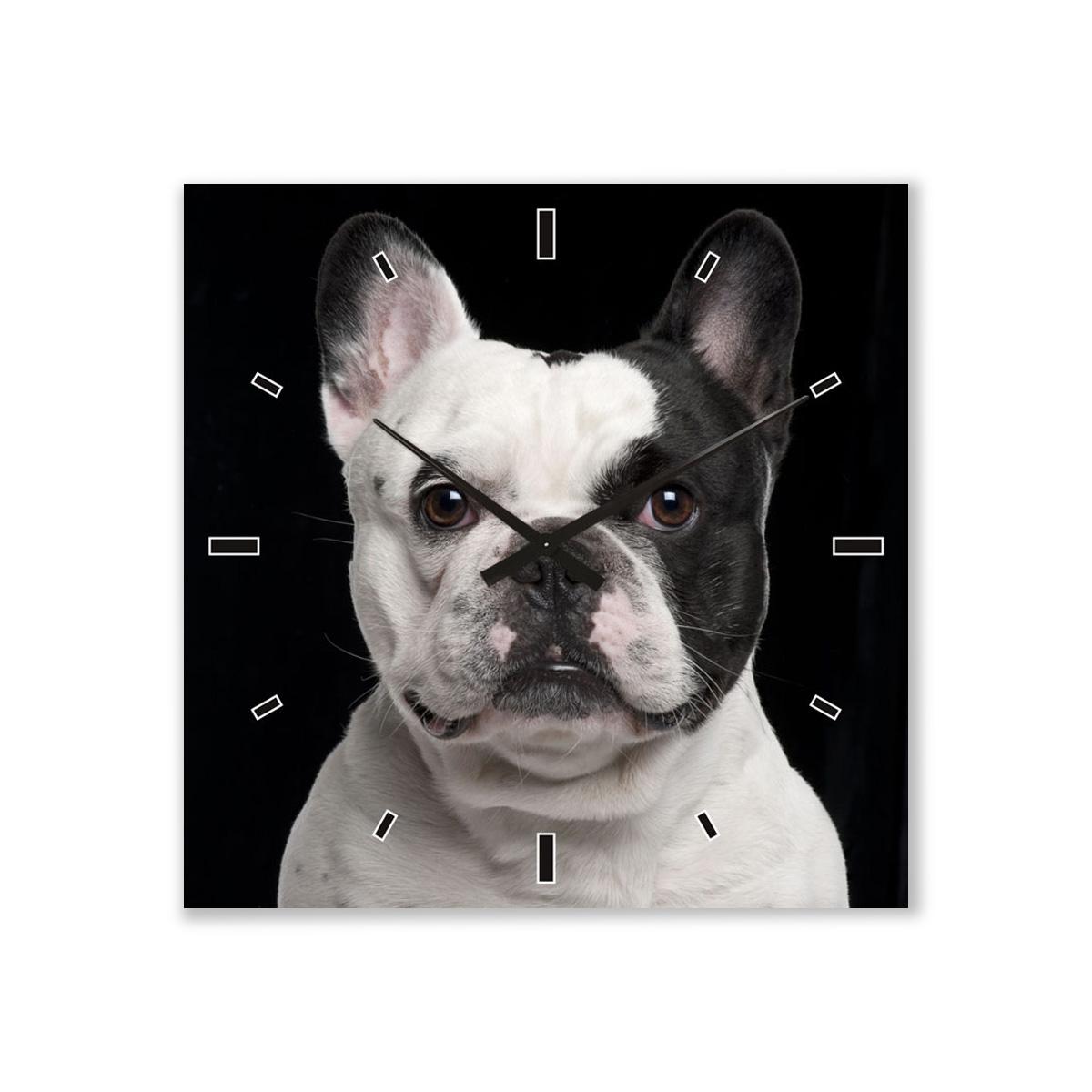 ImageLand Wanduhr Französische Bulldogge 780291