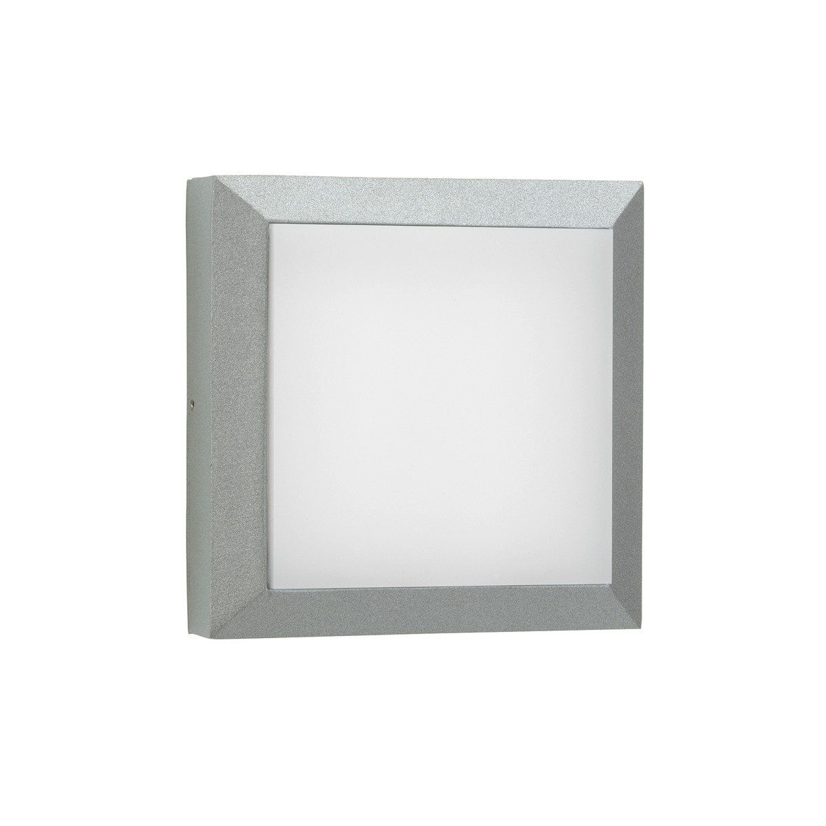 Albert 6560 LED Wand- / Deckenleuchte, Silber