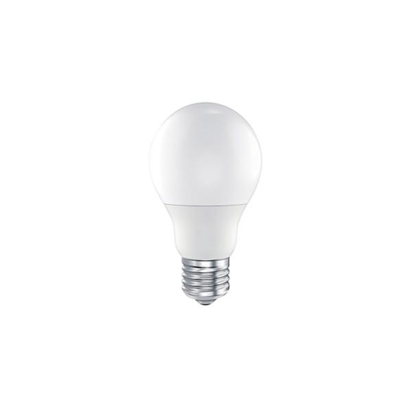 LED Ecolux Lampe E27 6,5 W, warmweiß, matt